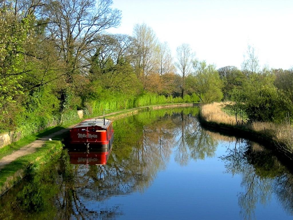View from Arley Bridge